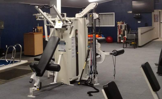 Perry Physical therapy Perry Michigan